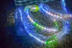 Am.used Bottle snake